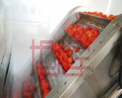 Hoist conveyor small elevator, fruit and vegetable hoist, tomato hoist, stainless steel.